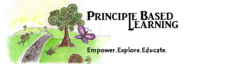 Principle Based Learning